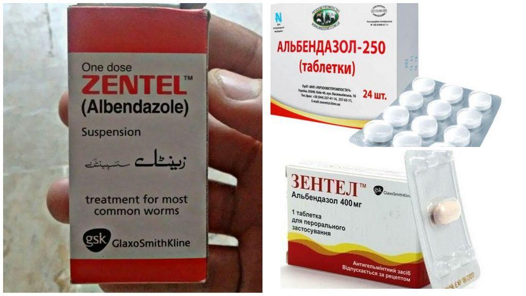 Бензимидазолы против лямблий