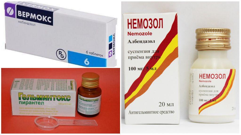 Препараты для лечения человеческого власоглава