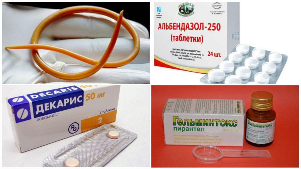 Лекарства от глистов широкого спектра действия