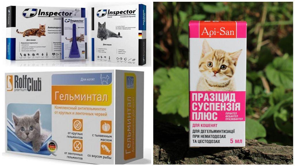 Препараты для лечения котят от глистов