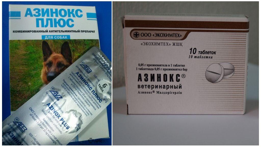 Азинокс для людей