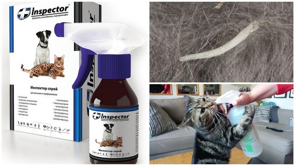 Спрей Инспектор от глистов для кошек