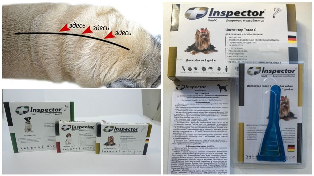Инспектор для собак от глистов