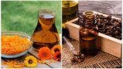 Календула и гвоздичное масло от лямблий