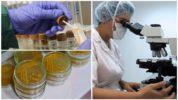 Анализ кала на яйца гельминтов