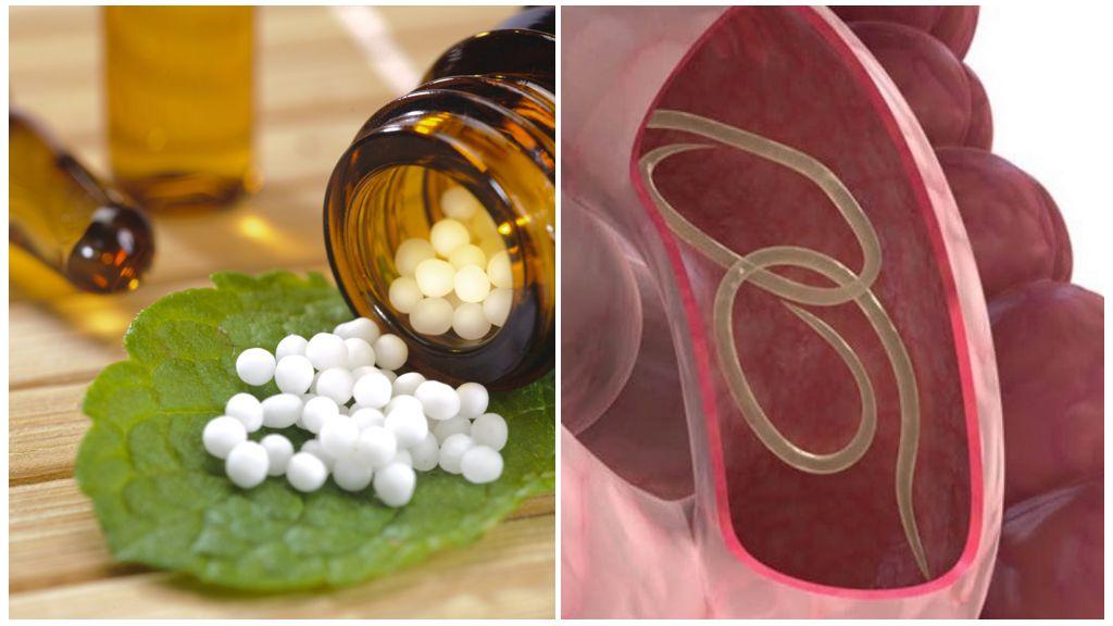 Гомеопатические препараты от глистов у взрослых и детей