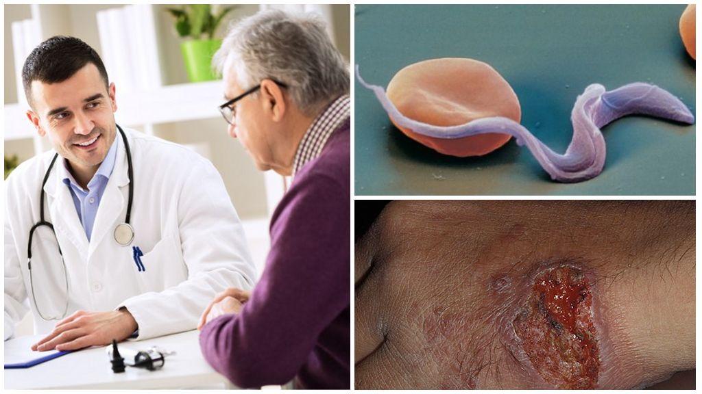 Лечение заболеваний, вызываемых глистами