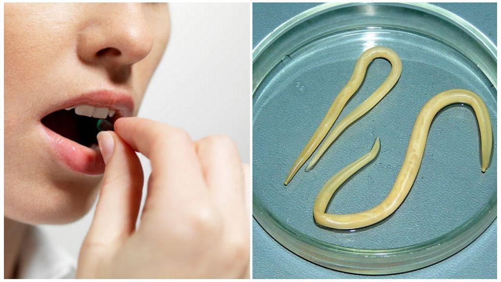 Самые эффективные препараты от глистов и паразитов