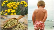 Растения для детей от глистов