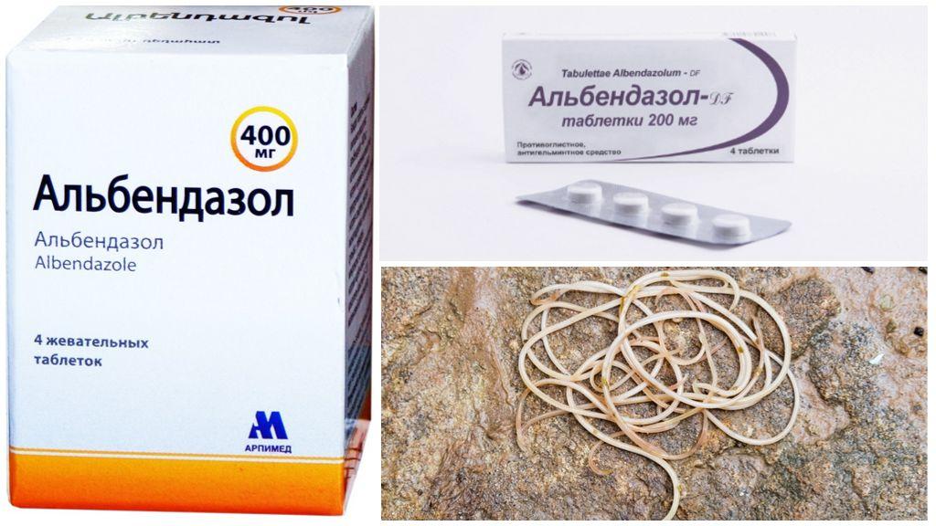 Инструкция по применению Альбендазола для человека