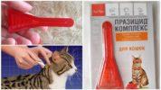 Празицид от глистов для кошек