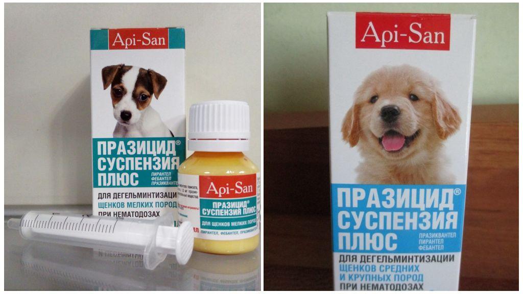 Суспензия Празицид плюс для собак и щенков