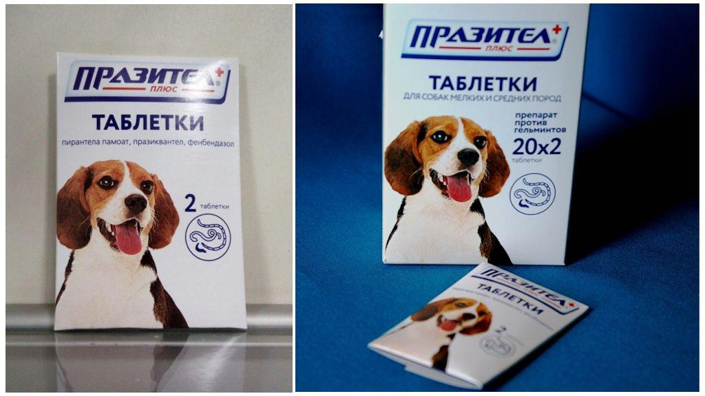 Таблетки для собак Празител и Празител плюс