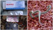 Препараты против глистов