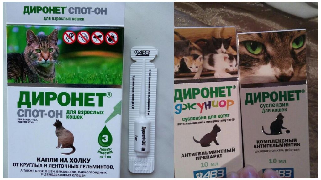 Диронет и Диронет Спот он для кошек и котят