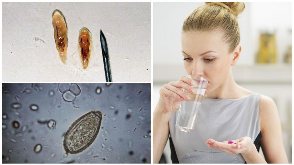 Паразиты в организме человека: признаки заражения и лечение