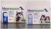 Милпразон от глистов для собак