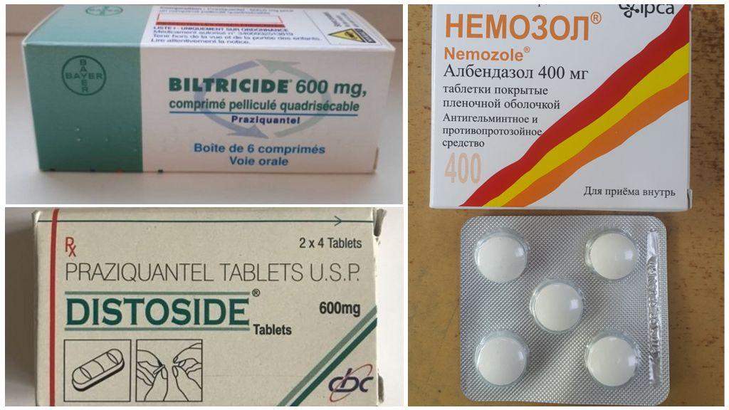 Лекарства от описторхоза