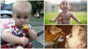 Пути заражения детей энтеробиозом
